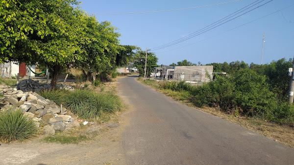 cần bán đất hồ tràm vũng tàu mặt tiền đường ODA , vị trí sau lưng giáo sứ Hồ Tràm