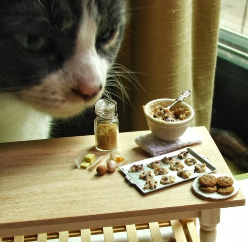 01-Cat-with-Chocolate-Chip-Cookie-Prep-Small-Miniature-Food-Doll-Houses-Kim-Fairchildart-www-designstack-co