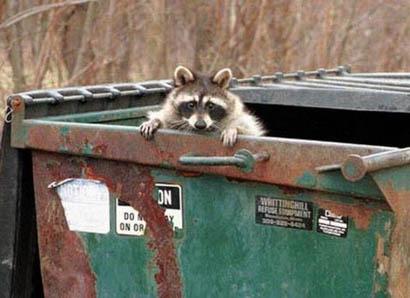 Define Trash Can Angry Cartoon White Urban Dictionary