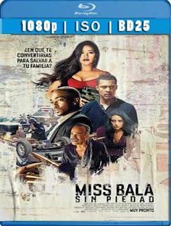 Miss Bala 2019 BD25 [1080p] Latino [GoogleDrive] SXGO