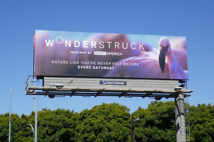 Wonderstruck Pink Flamingo billboard