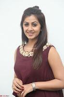Nikki Galrani in a Brown Shining Sleeveless Gown at Nakshatram music launch ~  Exclusive 015.JPG