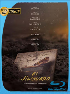 El jilguero (The Goldfinch) (2019) HD [1080p] Latino [GoogleDrive] SilvestreHD