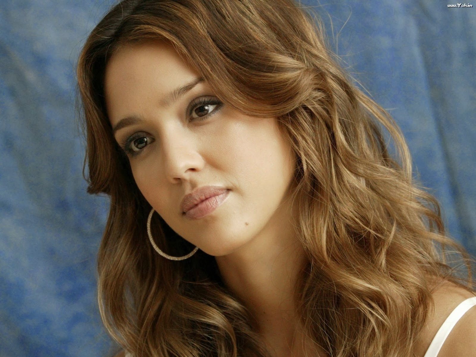 jessica alba hd wallpapers 2013 images pictures movies