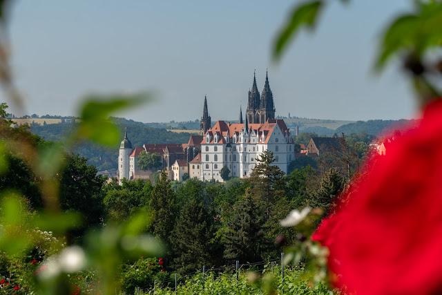 Sächsischer Weinwanderweg | Etappe 6 Von Meißen bis Diesbar-Seußlitz | Wandern in Sachsen | Region Dresden-Elbland 12