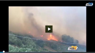 http://tgs.gds.it/2017/05/13/scirocco-e-non-solo-le-cause-degli-incendi-in-sicilia_665090/