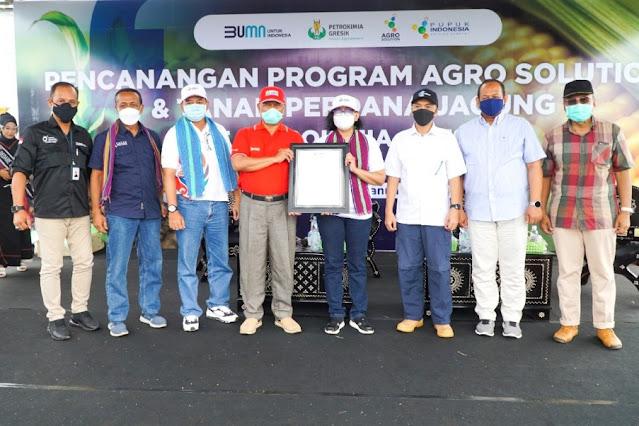 Agro Solution, angin segar untuk petani jagung di Lombok Timur