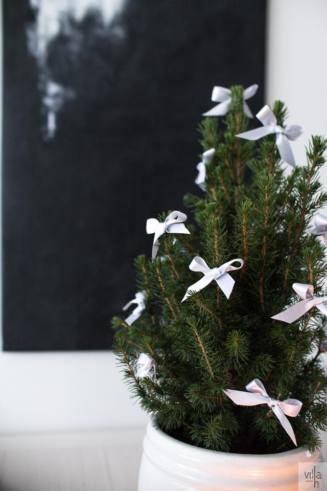 kartiovalkokuusi, joulukuusi, joulukoristelu, ideoita jouluun