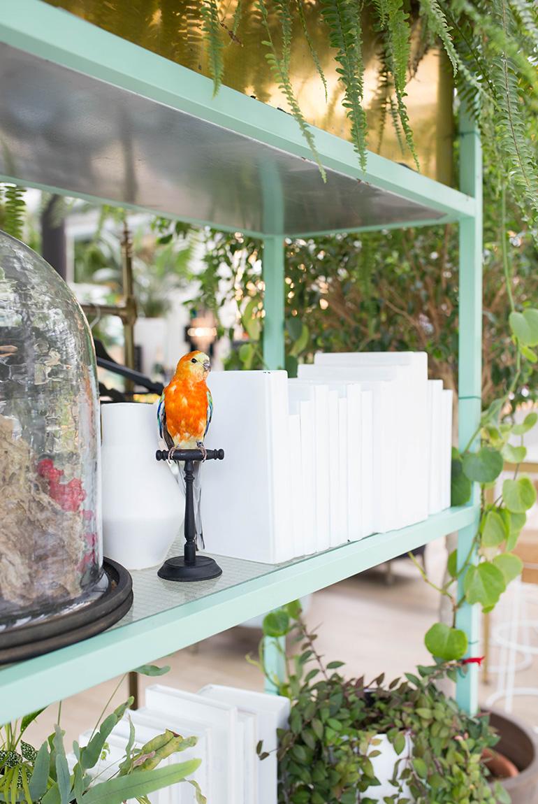 invernadero-peñotes-comedor-decoracion-detalle