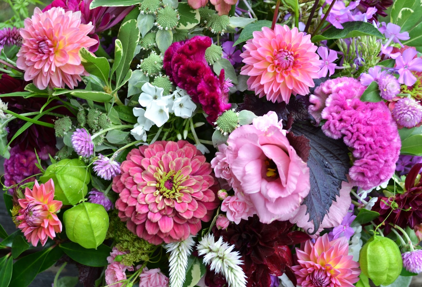 Wedding Flowers From Springwell Zinnia And Dahlia
