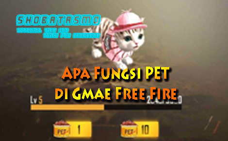 Apa Fungsi PET di Free Fire