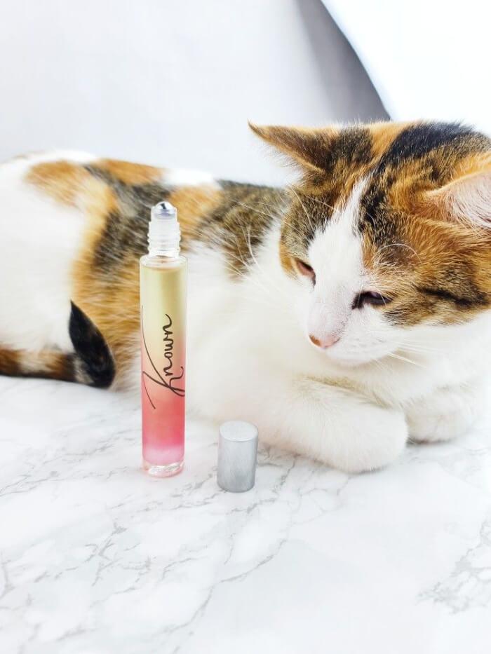 a-girls-gotta-spa-known-perfume-daisy-adair-2
