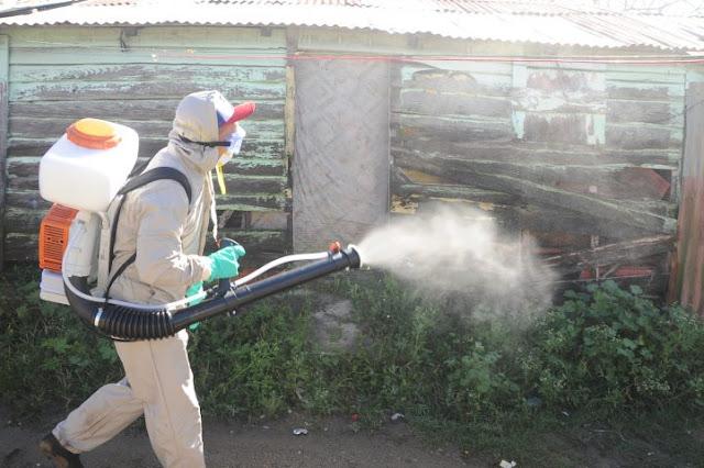Ministerio de Salud interviene sectores en Constanza por casos sospechosos de dengue