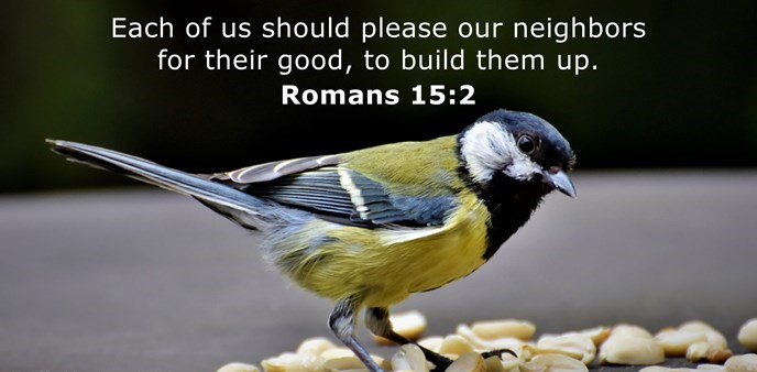 Each of us should please our neighbors for their good, to build them up.