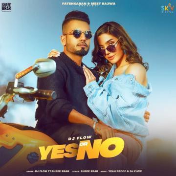 Yes Or No Song Lyrics - Dj Flow Ft Shree Brar | Punjabi Song