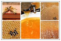 Le miel est vraiment un cadeau de la nature pour guérir