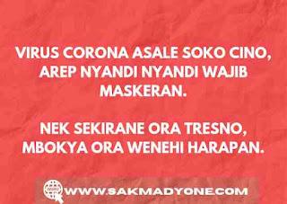 Pantun lucu corona bahasa jawa