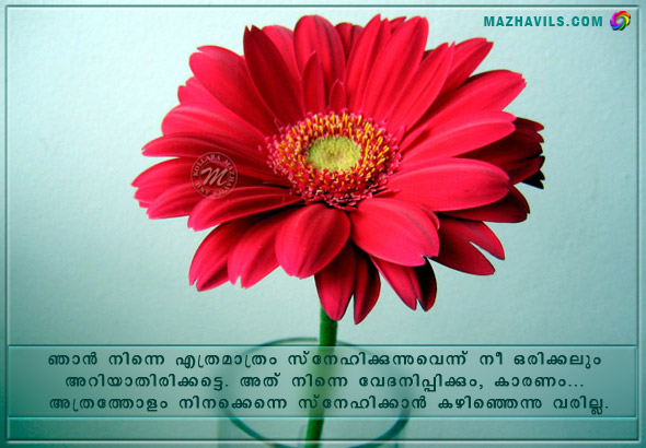 Love messages in malayalam with pictures m4hsunfo Images