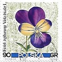 Selo Viola Tricolor