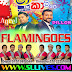 SHAA FM SINDU KAMARE WITH AHUNGALLA FLAMINGOES 2019-02-15
