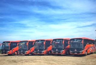 Sewa Bus Pariwisata Murah, Sewa Bus Pariwisata