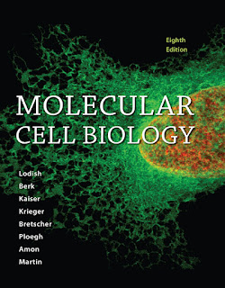 Molecular Cell Biology 8th Edition