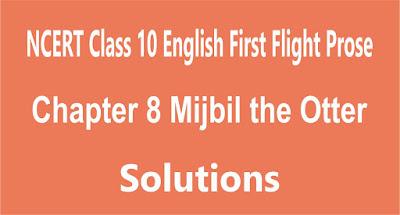 Chapter 8 Mijbil the Otter