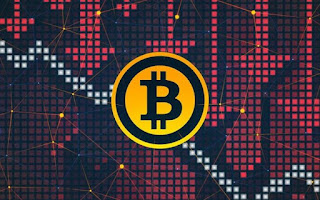 """Fall of Bitcoin: """"I knew the risk was huge"""" :"""