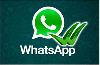 whats-app-introduces-new-feature-in-the-mobile-application-how-it-works