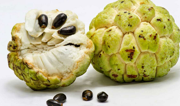 What are the benefits of cream fruit for the body ?