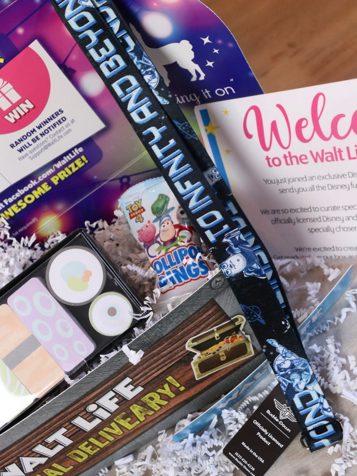"""""""Walt Life"""" Monthly Subscription Box REVIEW!"""