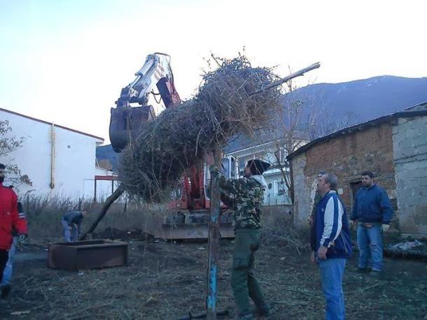 Κορησός: Έτοιμη η Κόλεντα της γειτονιάς του Γκούση (φωτογραφίες)
