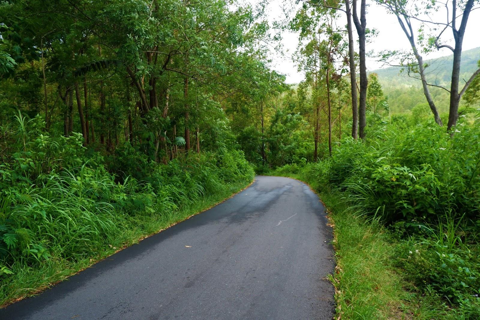 jalan menuju desa adat bena