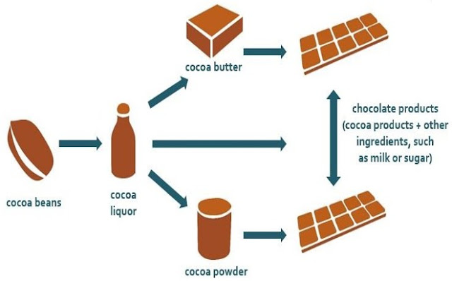 Cocoa Business Plans / Feasibility Report / Project for loan/Grant/ Investment Guide