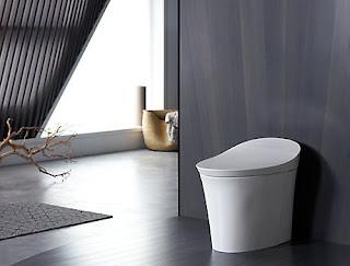 Perhatikan 3 Hal ini Saat Pakai Intelligent Toilet Terbaik