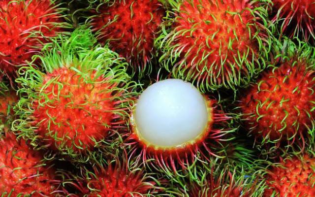 Efek Samping Buah Rambutan