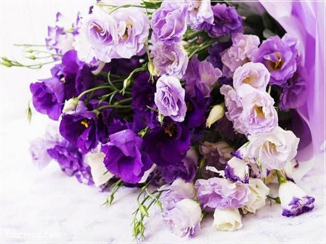 اجمل بوكيه ورد 11   best flowers bouquet 11