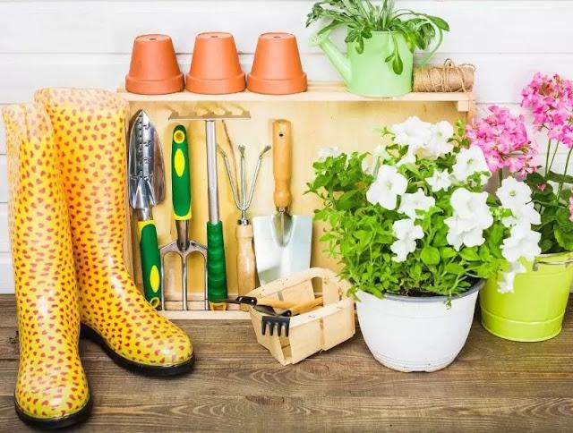 Gardening Supplies Every Gardener Needs