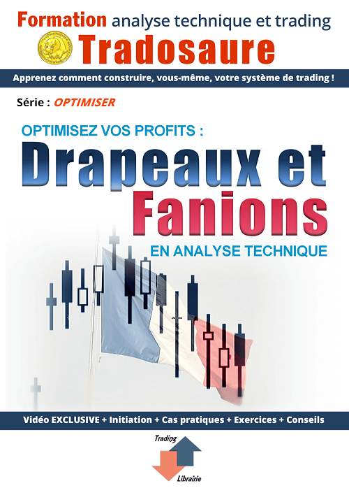 drapeaux-fanions-bourse-formation-video