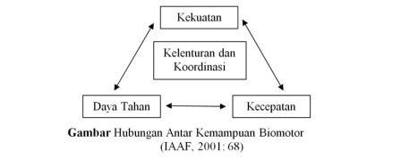 hubungan antar kemampuan biomotor