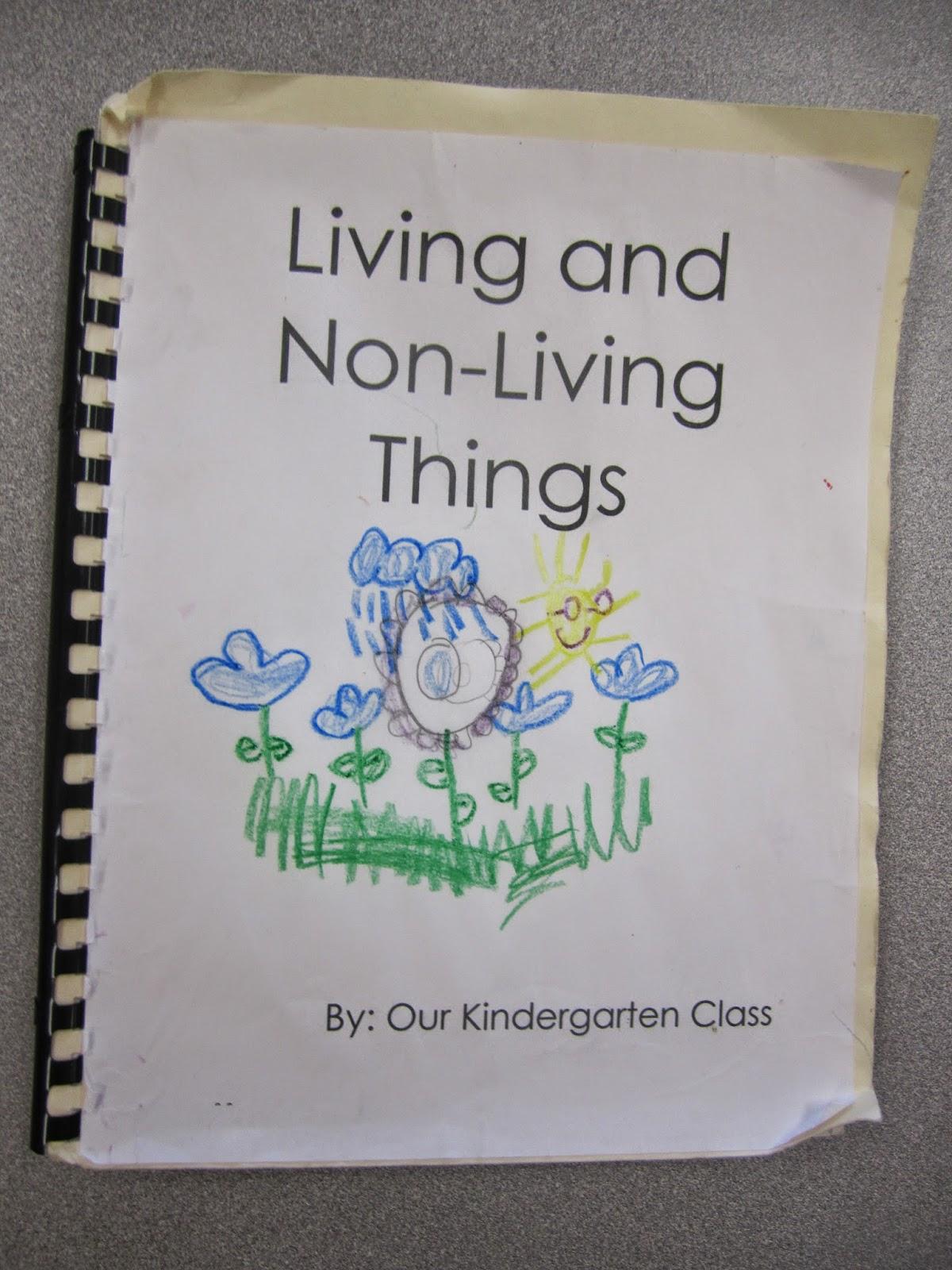 Mrs Parisi S Kindergarten Class