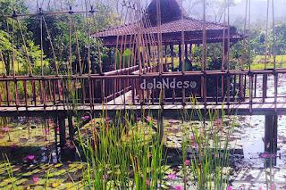 Yuk, Kunjungi Wisata Desa Keren di Jogja Yang Satu Ini