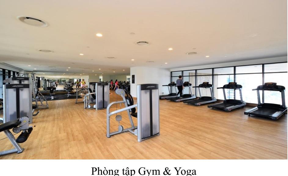 Phòng tập Gym và Yoga