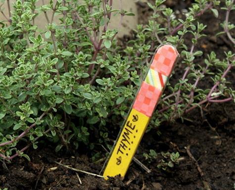 Use a stick as a planter