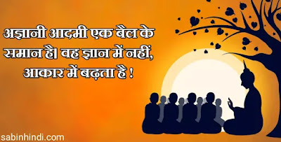 inspirational buddhism quotes in hindi