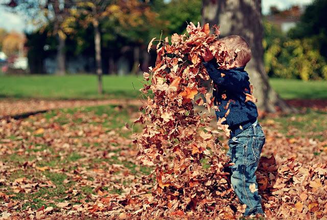 Kind schmeißt Laub umher