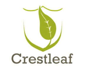 Telling Your Family Story on Crestleaf