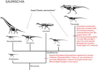 Ayam Adalah Dinosaurus Itu Sendiri