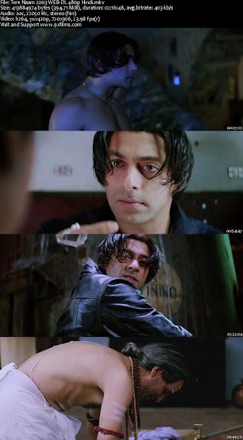 Tere Naam 2003 WEB-DL 480p Hindi