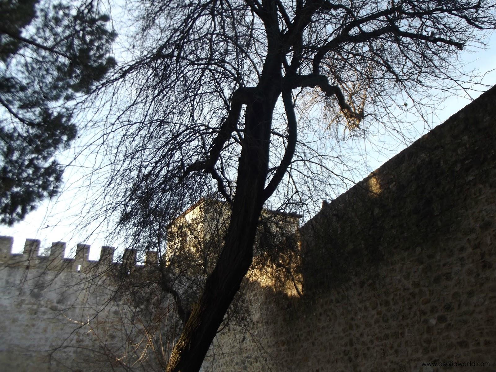 Lisboa: Castelo de São Jorge